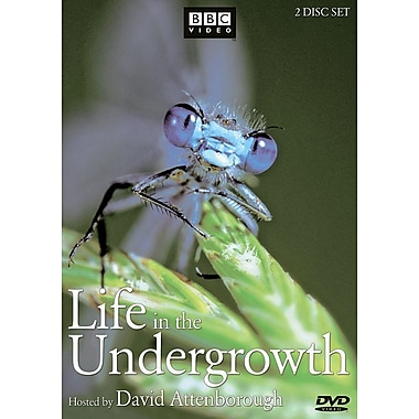 Life In The Undergrowth (DVD)