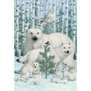 Sunrise Nature Holiday Boxed Cards Lynn Bywaters