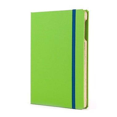 Portenzo BookCase for iPad mini, Green Apple and Sky Blue