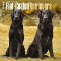 2014 Browntrout Flat-Coated Retrievers  Square 12x12