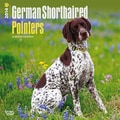2014 Browntrout German Shorthaired Pointers  Square 12x12