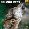 2014 Browntrout Animal Planet Wolves  Square 12x12
