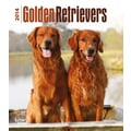 2014 Browntrout Golden Retrievers  Engagement