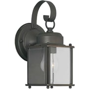 Aurora® 1 Light Outdoor Lantern W/Clear Beveled Glass Shade, Royal Bronze