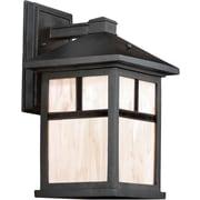 "Aurora® 14"" x 8"" 26 W1 Light Outdoor Lantern W/Honey Glass Shade, Black"