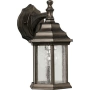 "Aurora® 12"" x 6 1/2"" 100 W 1 Light Outdoor Lantern W/Clear Seeded Glass Shade, Olde Bronze"