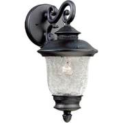 "Aurora® 14"" x 7"" 100 W 1 Light Outdoor Lantern W/Clear Crackle Glass Shade, Black"