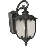 "Aurora® 20"" x 8"" 100 W 1 Light Outdoor Lantern W/Clear Seeded Glass Shade, Black"