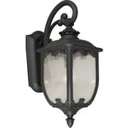 "Aurora® 22 3/4"" x 9 1/2"" 100 W 1 Light Outdoor Lantern W/Clear Seeded Glass Shade, Black"