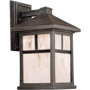"Aurora® 14"" x 8"" 100 W 1 Light Outdoor Lantern W/Honey Glass Shade, Painted Rust"