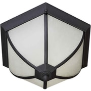 "Aurora® 8 1/2"" x 14 1/2"" 18 W 2 Light Flush Mount W/Frosted Seeded Glass, Black"