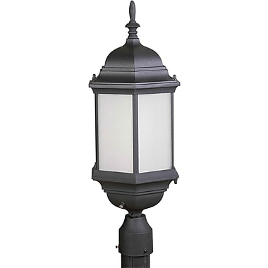Aurora® 1 Light Outdoor Post W/Frosted Seeded Glass Shade, Black