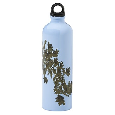 Gaiam® Aluminum Water Bottle with Cap Style 1, 750mL, Earth Meets Sky