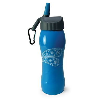 Gaiam® Stainless Steel Water Bottle with Cap Style 3, 750mL, Paisley Dream