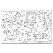 Pacon® Learning Walls® Rain Forest Wall Paper, 72(W) x 48(W), 1 Roll