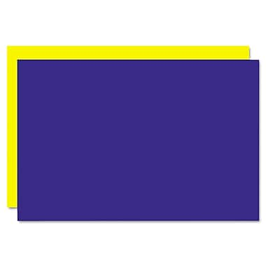 Geographics® 26829 20in. x 30in. Foam Board, Blue/Yellow