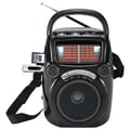 Quantum FX CS-146 Karaoke Speaker W/AM/FM/SW1-9 11 Band Radio, Black