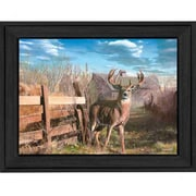KD1029-405  Back Forty Buck