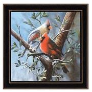 KD1049-782  Cardinal