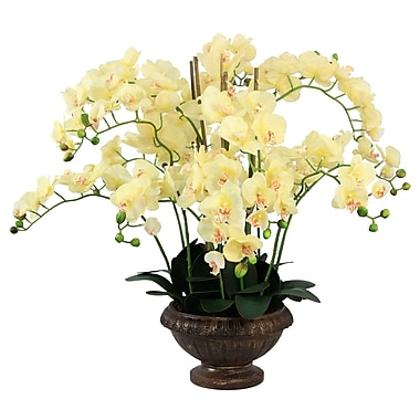 Laura Ashley Lifelike Silk Orchid Arrangement with Planter