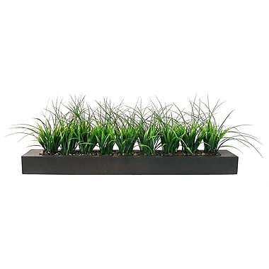Laura Ashley 13in. Green Grass in Contemporary Wood Planter