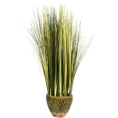Laura Ashley Onion Grass in a Ceramic Planter