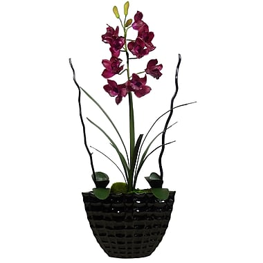 Laura Ashley High End Real Touch Burgundy Orchid Planter in Willow Branches and Ferns