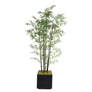 "Laura Ashley 78"" Bamboo Tree in 14"" Fiberstone Planter, Black/Gray"