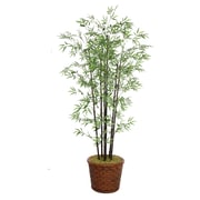 "Laura Ashley 77"" Bamboo Tree in 17"" Fiberstone Planter"