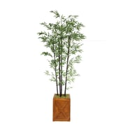 "Laura Ashley 81"" Bamboo Tree in 13"" Fiberstone Planter"