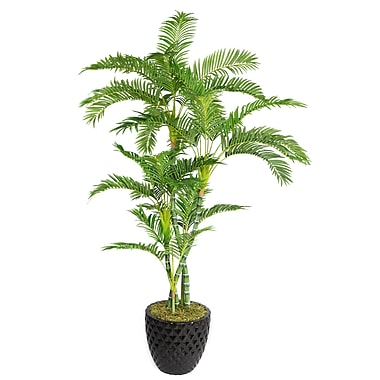 Laura Ashley 78in. Palm Tree in 16in. Fiberstone Planter, Black
