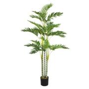 """Laura Ashley 68"""" Palm Tree"""