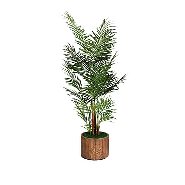 Laura Ashley 73in. Palm Tree in 16in. Fiberstone Planter