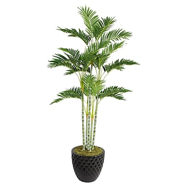 Laura Ashley 74in. Palm Tree in 16in. Fiberstone Planter, Black