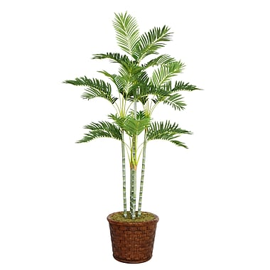 Laura Ashley 73in. Palm Tree in 17in. Fiberstone Planter
