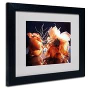 """Trademark Fine Art 'Don't Cry For Me' 11"""" x 14"""" Black Frame Art"""
