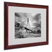 """Trademark Fine Art 'First Link' 16"""" x 20"""" Wood Frame Art"""