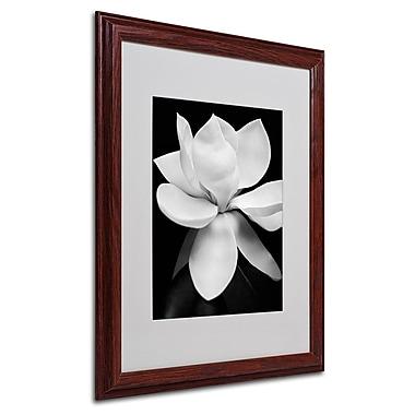 Trademark Fine Art 'Magnolia' 16