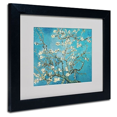 Trademark Fine Art 'Almond Branches'