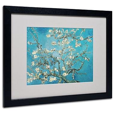 Trademark Fine Art 'Almond Branches' 16