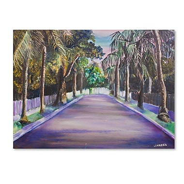 Trademark Fine Art 'Key West Street' 14