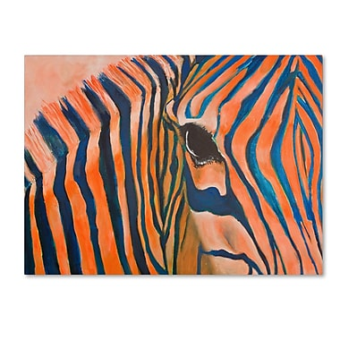 Trademark Fine Art 'Orange Zebra' 24