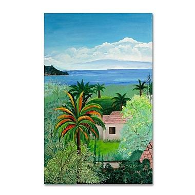 Trademark Fine Art Costa Rican Beach' 30