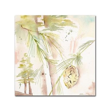 Trademark Fine Art 'Pine Shadow' 14