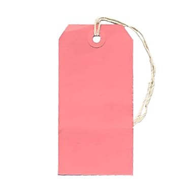 JAM Paper® Gift Tags with String, Medium, 2 3/8 x 4 3/4, Pink, 10/pack (39197118)
