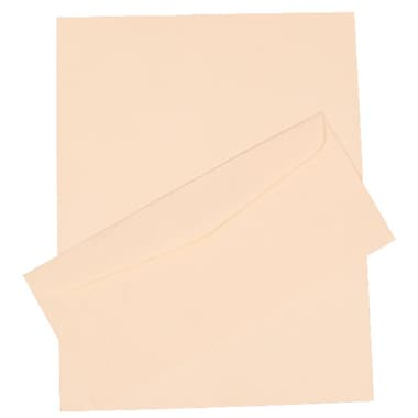 JAM Paper® 4.125in. x 9.5in. Laid Stationery Set W/100 Paper & #10 Matching Envelopes, Natural White