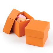 HBH™ 2-Piece Mix-and-Match Favor Boxes, Orange