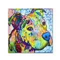 Trademark Fine Art 'Thoughtful Pitbull III'