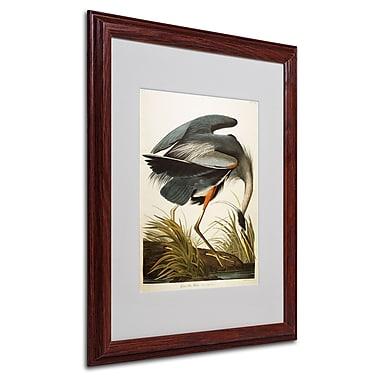 Trademark Fine Art 'Great Blue Heron' 16