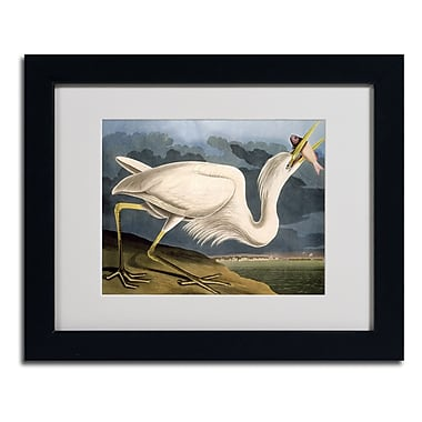 Trademark Fine Art 'Great White Heron'